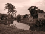 Back Streets of Dangriga