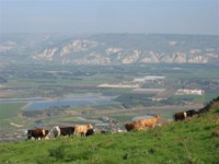 Highlight for Album: Israel National Trail